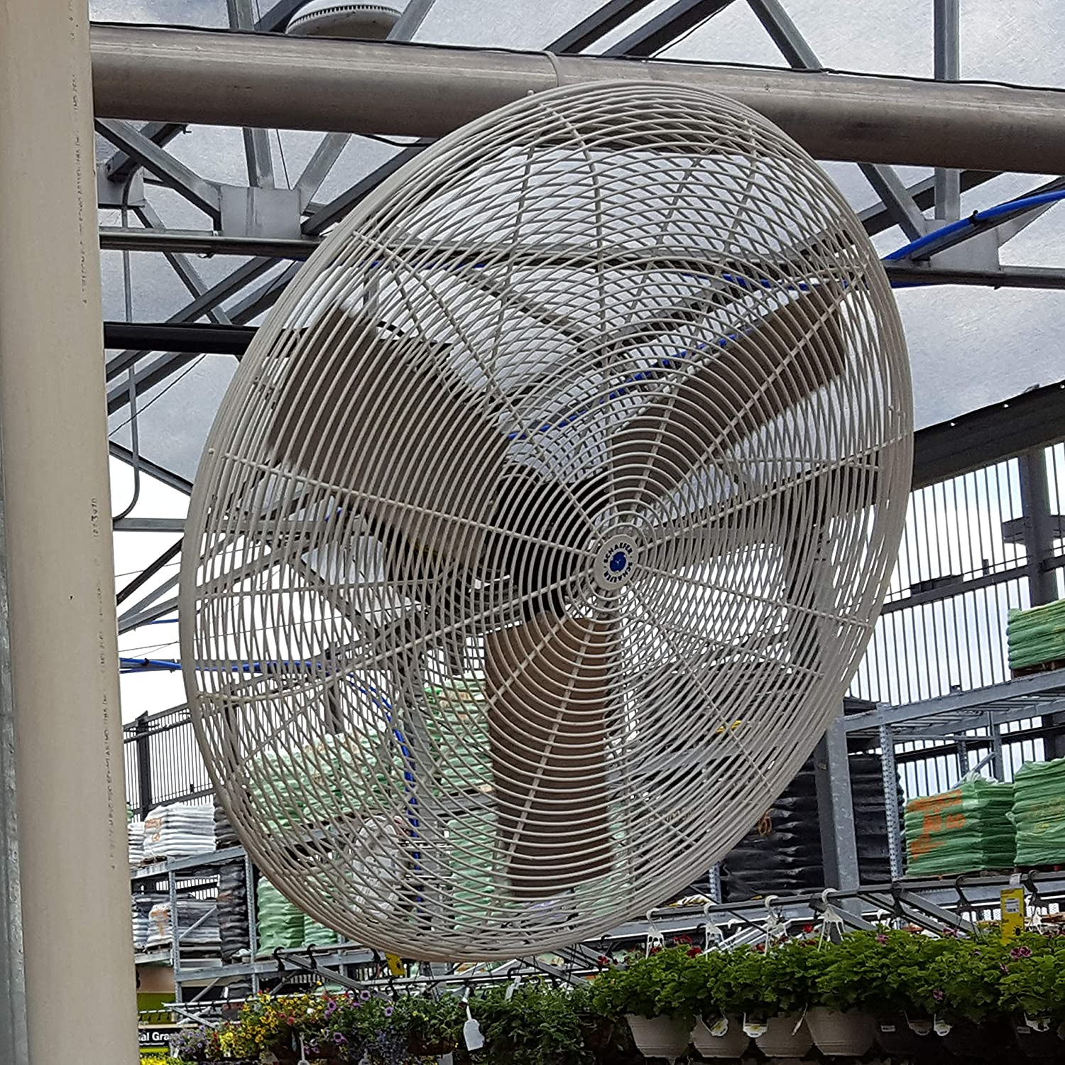 """30"""" Circulation Fan, White OSHA Guards installed in a greenhouse plantation"""