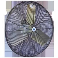 "30"" Hazardous Location Circulation fan with black coated steel guard"